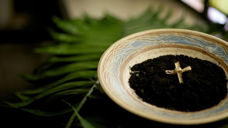 ash wed bowl